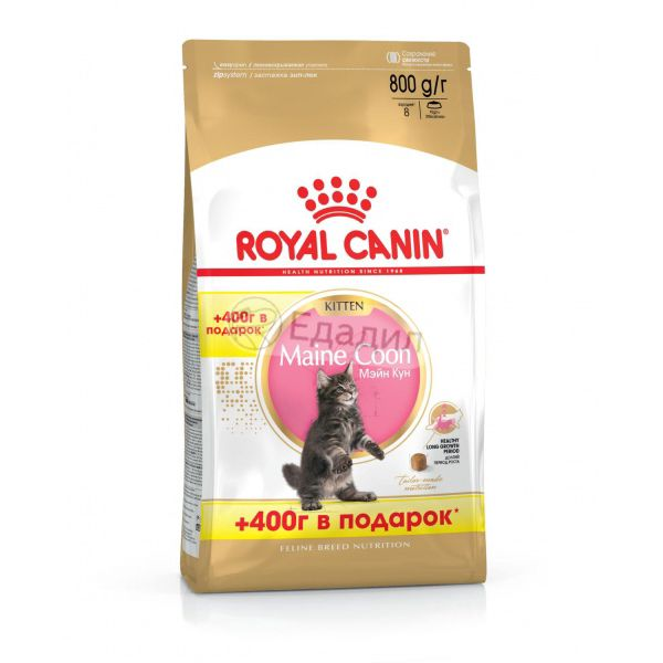 Корм royal canin kitten 800